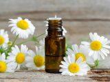 Óleo essencial de Camomila em um frasco e plantinhas de Camomila