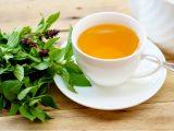 Xícara branca com chá de manjericão e folhas da erva ao lado.